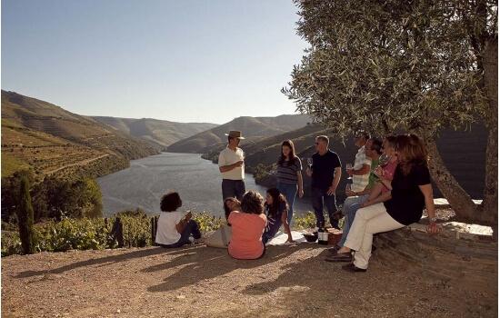 Deixe-se envolver pela região e participe numa visita aos jardins de uma Quinta, com prova de vinhos no final!