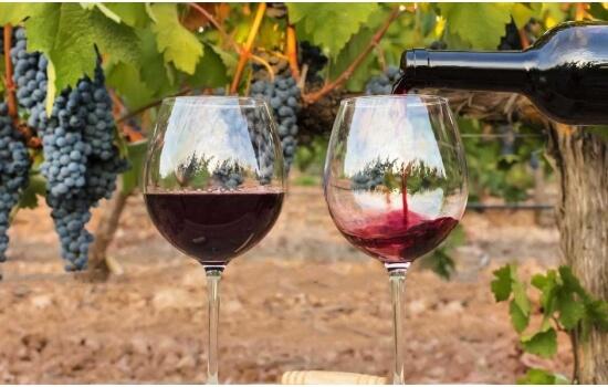 Os Vinhos do Douro são alguns dos vinhos mais famosos do Mundo