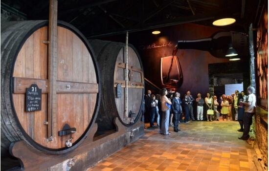 Em Vila Nova de Gaia poderá aprender tudo sobre o processo de confeção dos Vinhos do Porto, com uma visita às suas Caves!