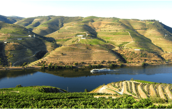 Um cruzeiro no Douro é fantástico para apreciar a beleza primaveril da região