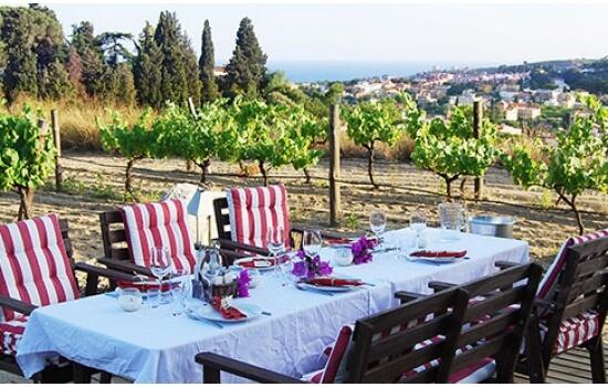 Se um piquenique não lhe agradar tanto, poderá sempre optar por um delicioso almoço nas vinhas