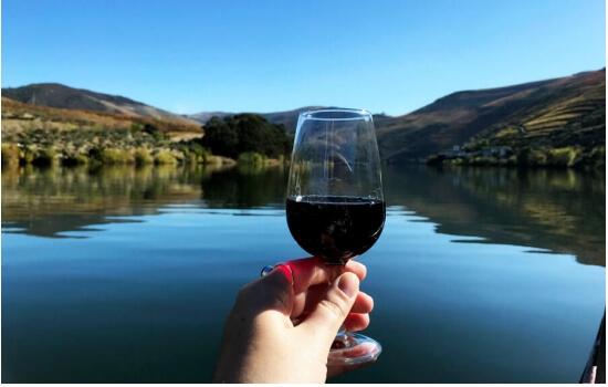 Navegue pelas margens do Douro e descubra os segredos do seu vinho