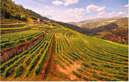 Nesta Páscoa, aproveite para fazer uma Escapadinha Romântica ao Douro