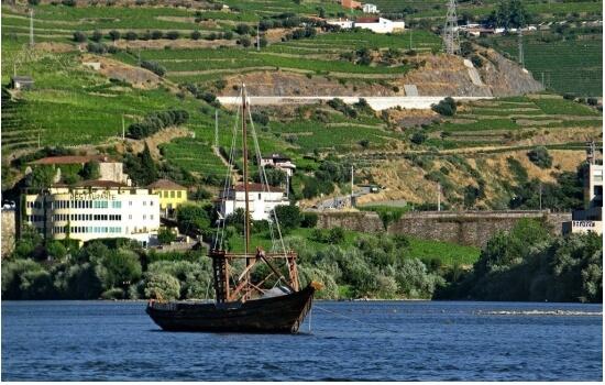 A sua fama deve-se, em parte, às embarcações que cruzam as águas do Rio Douro, tendo a Régua como destino final