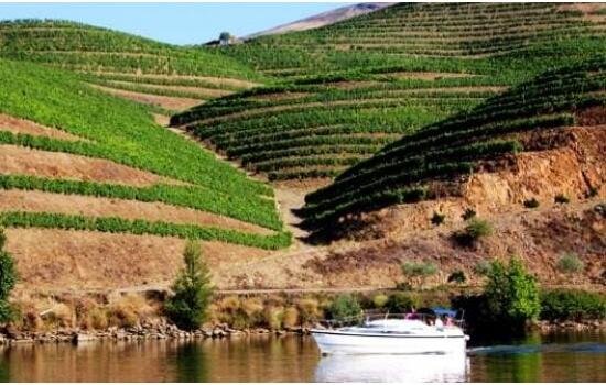 O Douro oferece algumas das paisagens mais românticas