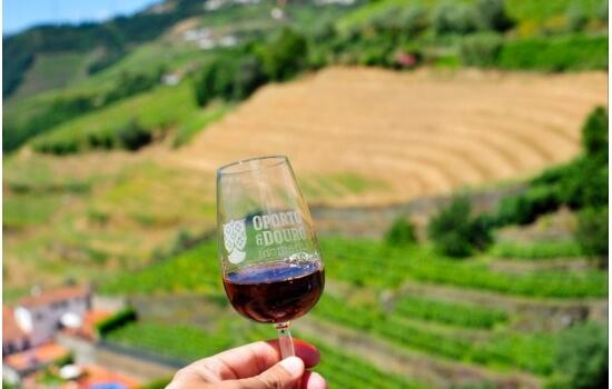 As vinhas do Douro são o plano de fundo perfeito, para apresentar ao mundo o seu cálice de vinho do porto!