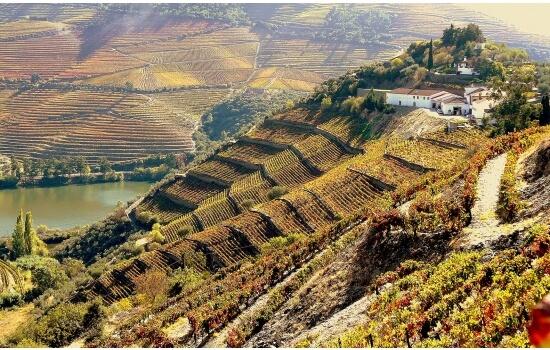 A Quinta do Crasto é uma das mais famosas Quintas do Douro, tendo sido utilizada como cenário para algumas filmagens