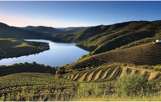 No Douro, encontra algumas das paisagens mais belas de Portugal