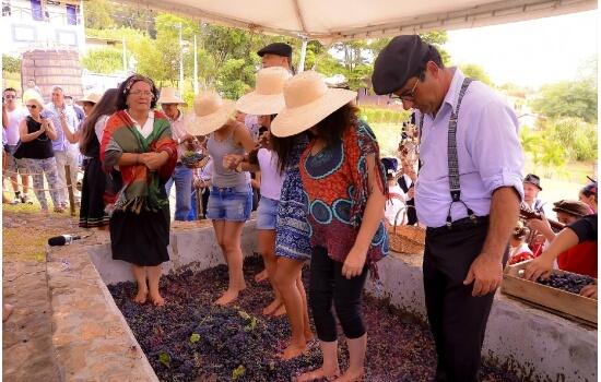 Ao longo do nosso programa poderá ainda participar nas tradições mais conhecidas - tal como o pisar das uvas!