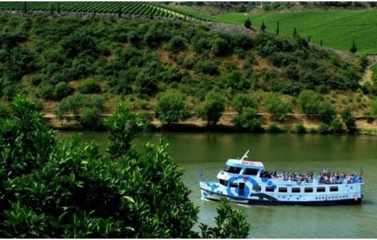 Um cruzeiro de meio-dia pela região mais famosa do Douro é também uma surpresa maravilhosa!