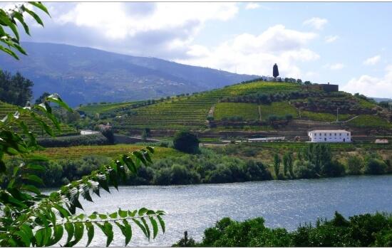 Ao visitar o Douro é impossível não se deparar com a famosa imagem da Sandeman