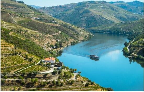 As paisagens do Douro são incríveis e a bordo de um cruzeiro serão ainda melhores!