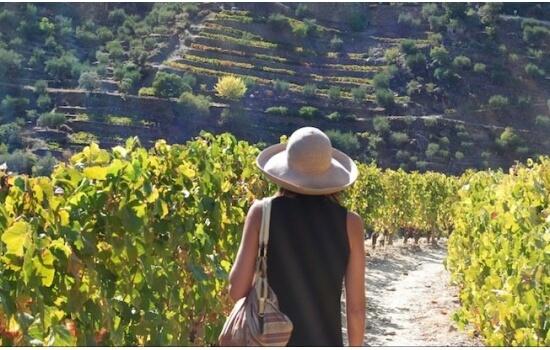 Aproveite a sua viagem ao Douro para descobrir algumas das paisagens mais únicas