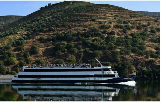Apesar de encontrar a bordo, a estabilidade das embarcações não permite qualquer enjoo - podendo apreciar melhor a sua viagem!