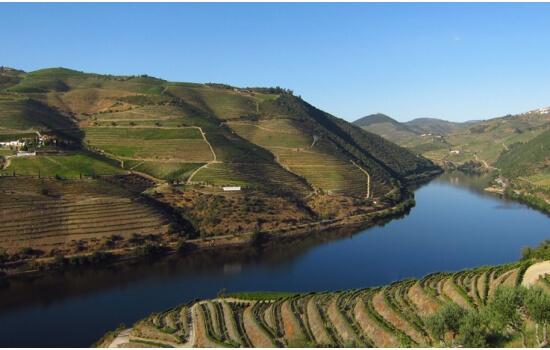 As paisagens do Douro são um dos melhores acompanhamentos para um bom vinho