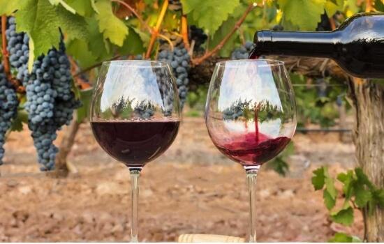 Haverá melhor local que o Douro para saborear um cálice deste famoso vinho?