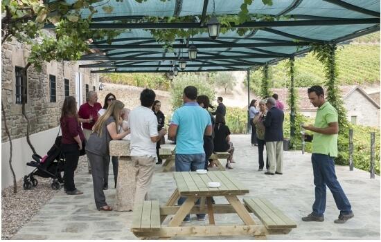 """Com a nossa """"Rota dos Vinhos"""" irá descobrir os vários sabores do Douro"""