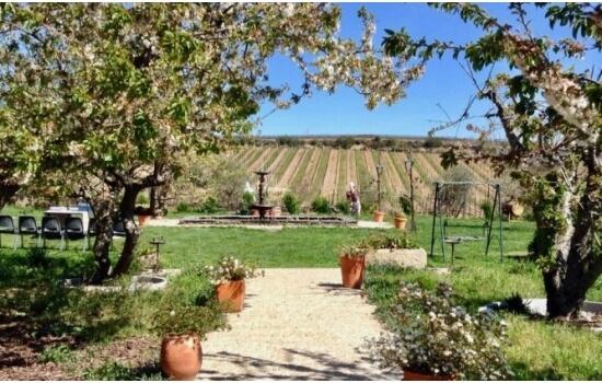 Uma visita ao Douro nunca está completa sem uma visita à Quinta da Avessada