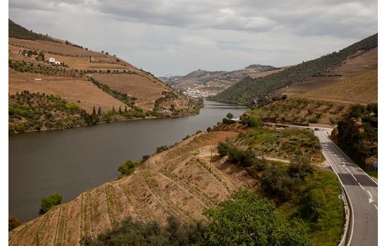 E não se esqueça de percorrer a estrada mais bela do mundo pelos socalcos do Douro