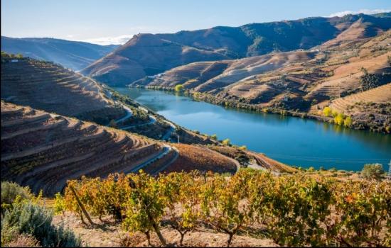 As paisagens do Douro são mundialmente famosas
