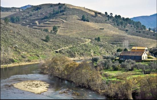 Selvagem e magnífico, o Rio Tua tem a sua origem em Mirandela