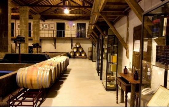 Além de provas de vinhos, aqui poderá ficar a conhecer o processo de produção do vinho da casa de mateus