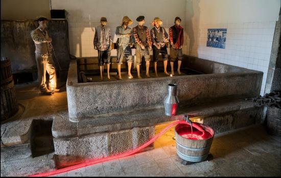 A Enoteca Quinta da Avessada é uma espécie de museu interativo