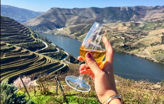 O Douro é um destino de Enoturismo de excelência