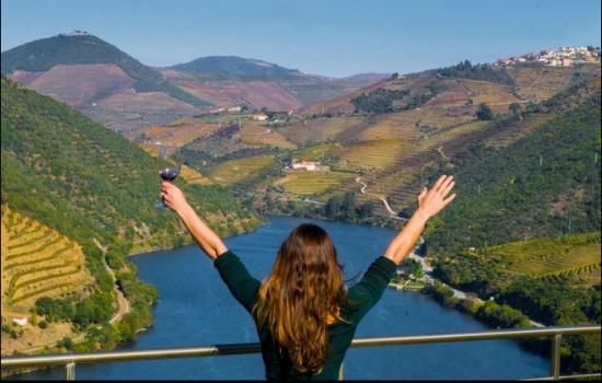 Nesta região produzem-se alguns dos melhores vinhos do mundo