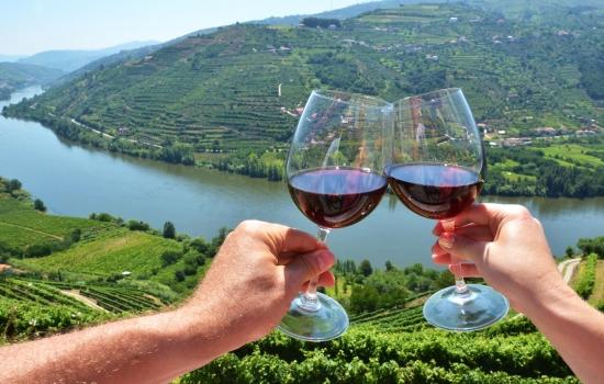 O Vinho é o êxito inconfundível da região