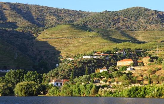 A Região Demarcada do Douro com as suas maravilhosas vinhas