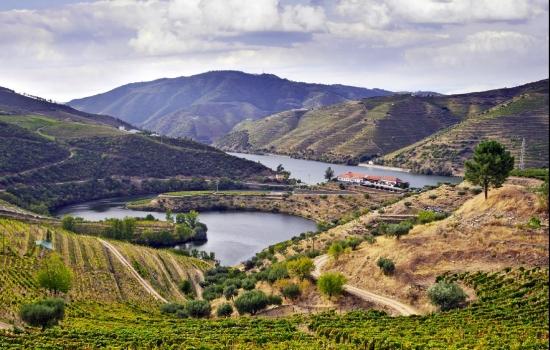 Os vales e socalcos do Douro