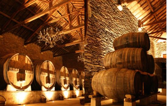 Quinta produtora de vinhos