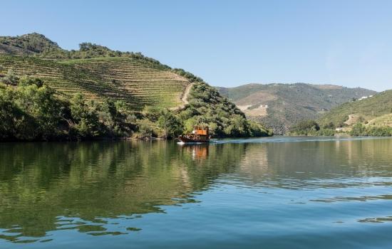 Cruzeiro no Douro em tradicional barco rabelo