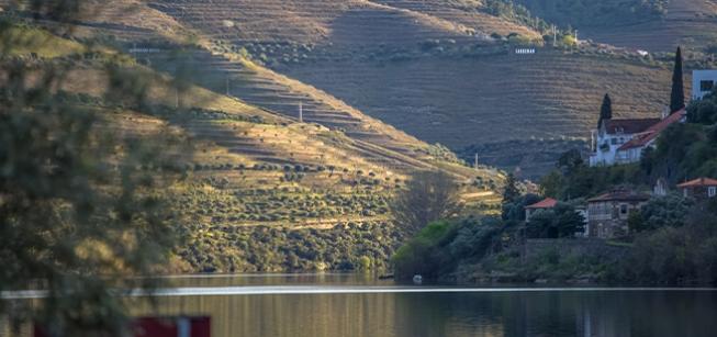 Cruzeiro Tesouros do Douro