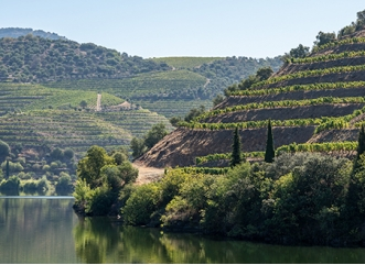 Secrets of Douro and Tâmega <br>3 Days</br>