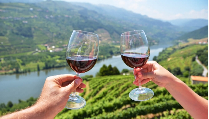 Gods Nectar in the Douro Valley: The Famous Port Wine!