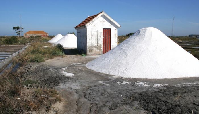 A produção de sal é uma das actividades mais características de Aveiro.