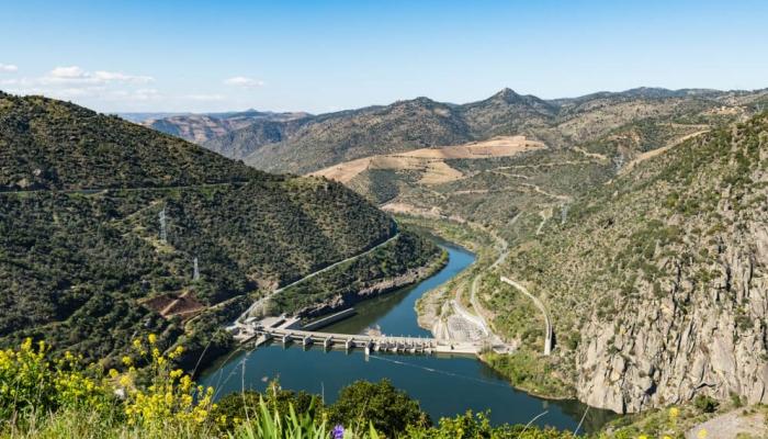 Barão de Forrester, era um verdadeiro apaixonado pela Região do Douro.