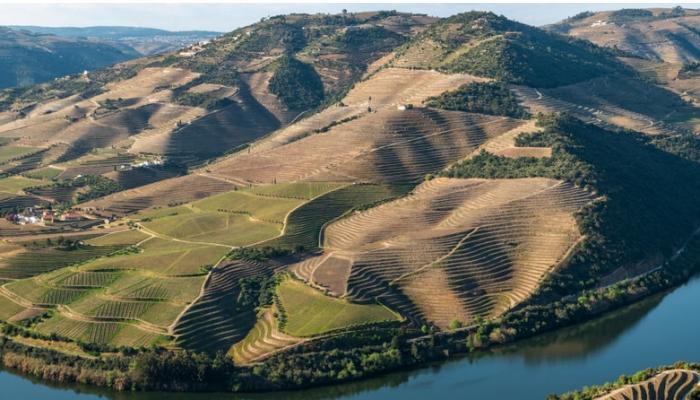 O Pinhão situa-se na confluência do rio Douro com o rio Pinhão.