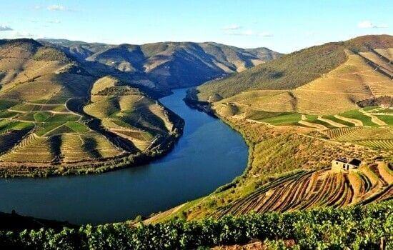 Desfrute de um magnífico Cruzeiro no Douro e descubra esta belíssima região!