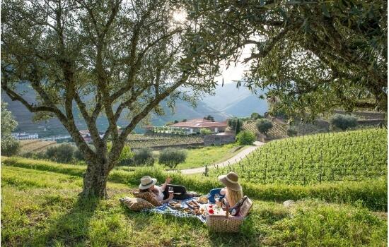 Muitas das Quintas do Douro oferecem um piquenique nos seus jardins - uma experiência inesquecível
