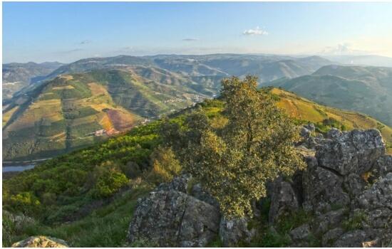 Os Miradouros do Douro permitem vistas fantásticas