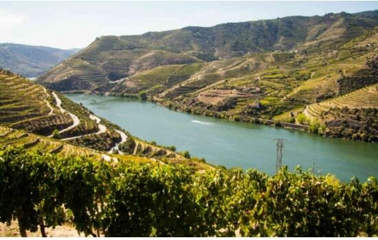 O Peso da Régua é o destino mais pretendido para os viajantes do Douro