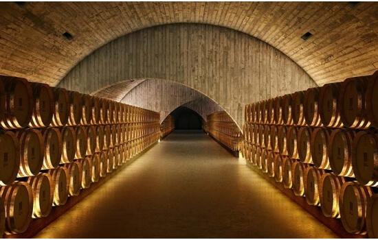 Aproveite a data especial para um dia diferente no Douro, com prova de vinhos