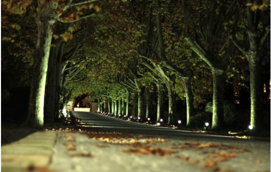 Torne a experiência inesquecível, com um passeio pelos jardins das Quintas do Douro