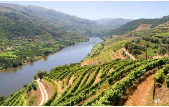 Aproveite para relaxar e aproveitar o melhor que o Douro tem para lhe oferecer!